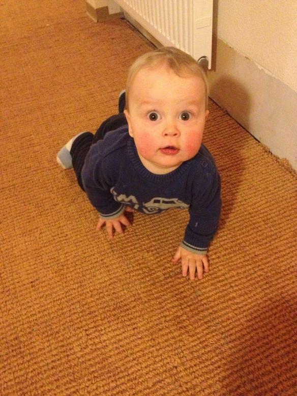 Felix in Gammelshausen auf dem Boden